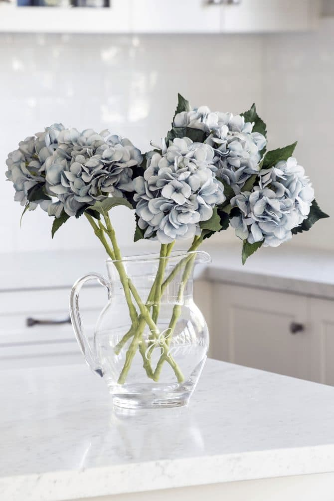 hydrangea light blue