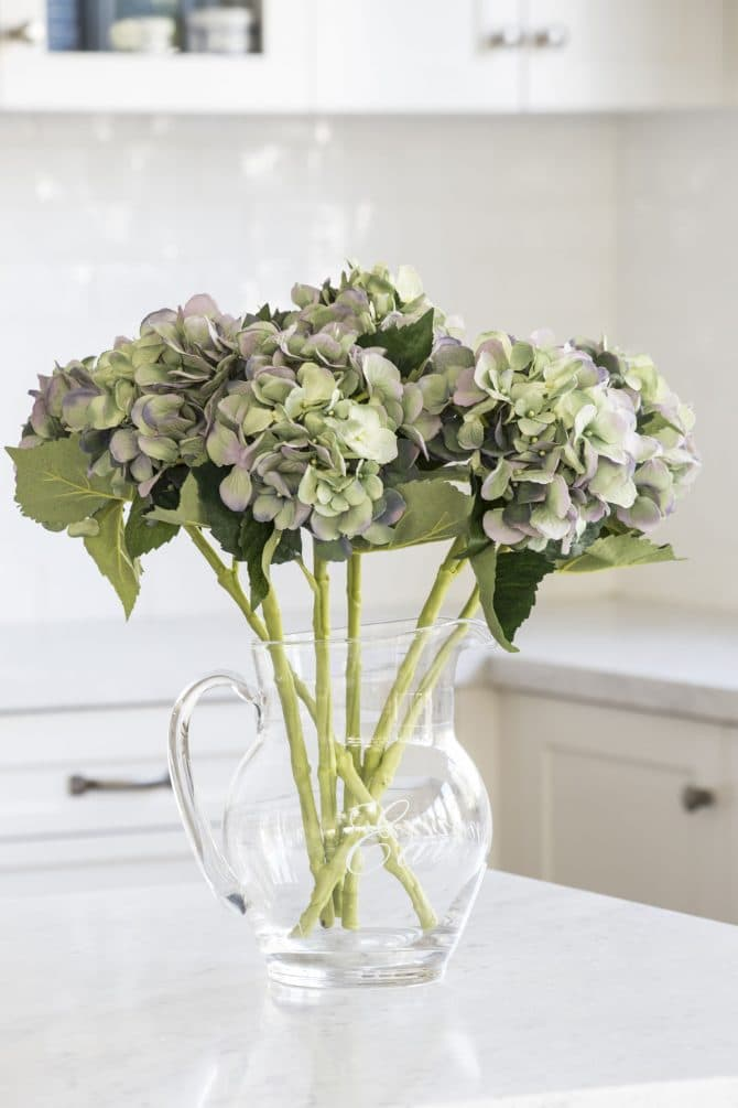 hydrangea light green